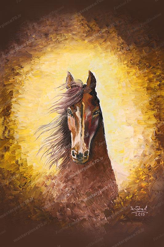 اسب خودم : My Own Horse